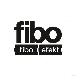 FIBO_logo_efekt_valge_taust