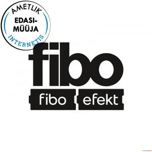 FIBO_logo_efekt_valge_taust_v4